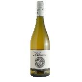 Marina Palusci Plenus Pecorino - 2015 - N. 12 Bottles