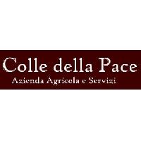 Logo Colle della Pace