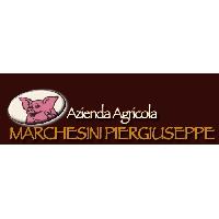 Logo Marchesini Salumi