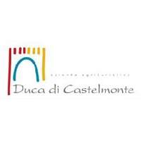 Logo DUCA CASTELMONTE