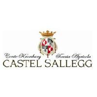 Logo Castel Sallegg
