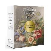 Tenuta Sant'Antonio Giardini di Vite - Bianco Garganega-Chardonnay IGT Trevenezie Bag 3 Lt.