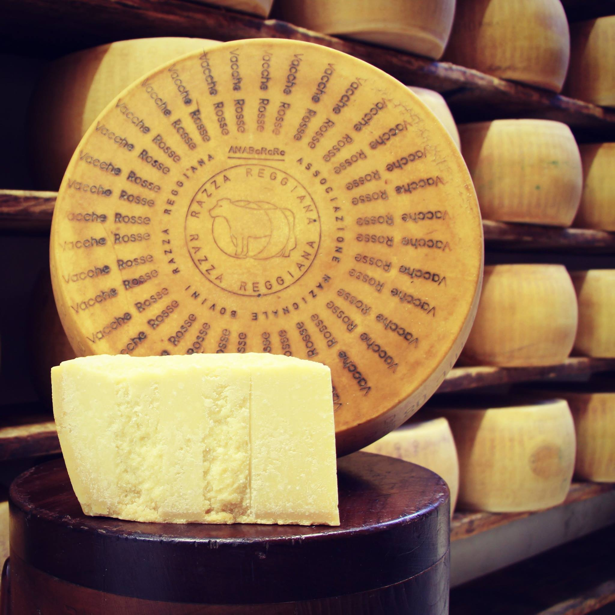 Parmigiano Reggiano Vacche Rosse (milk from the red cows) -  24/30 mesi -  0,50 / 0,55 Kg.