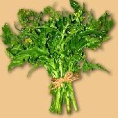 Frijarielli - Neapolitan Broccoli