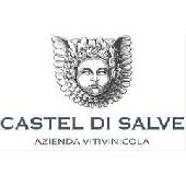 Magnum Cento su Cento Primitivo - 1,5lt in scatola di legno - Castel di Salve